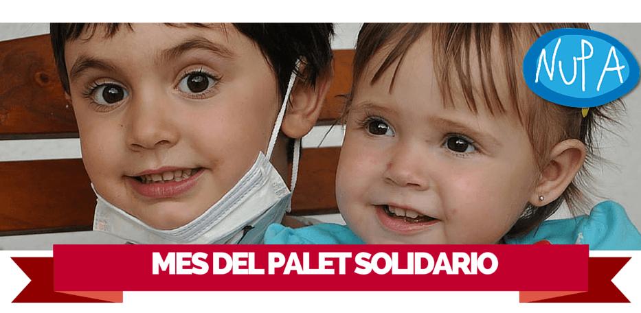 Palets por una buena causa, 'Mes del Palet Solidario'