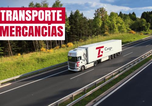 Transporte de mercancías: tipos y cuándo elegirlos