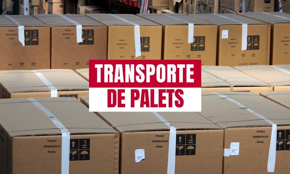 TRANSPORTE DE PALETS