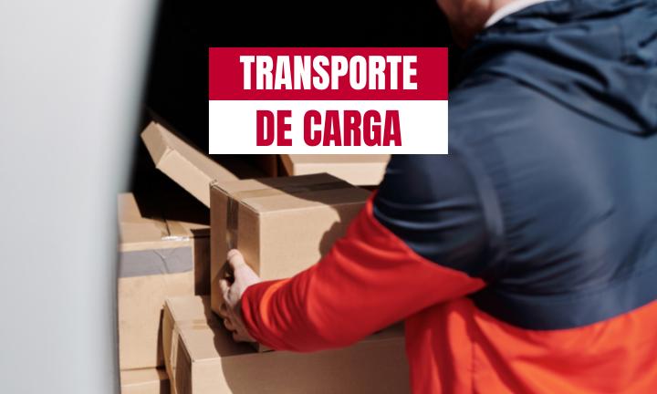 SERVICIO DE TRANSPORTE DE CARGA